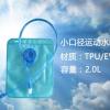 登极户外 DJ023-EVA-2L 优质环保可折叠便携运动水袋