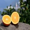 正宗秭归巴东赣南精品脐橙长虹纽荷尔甜橙新鲜橙子10斤装一件代发