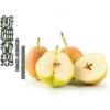 6斤促销 香梨 2017新鲜水果 梨子 产地直销 量大从优 批发