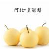 8斤促销 皇冠梨 2018新鲜水果 梨子 产地直销 量大从优 批发