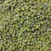 常青园进口绿豆 缅甸澳洲绿豆 毛绿豆毛杂绿豆 明绿豆 中颗粒批发