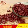 熟红豆低温烘焙红豆磨粉五谷磨坊原料现磨豆浆珍珠大红豆批发
