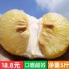 苹果柚湖南复兴优质柚子好吃孕妇柚水分充足包邮2个装