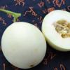 陕西阎良新鲜水果甜瓜当季现摘批发香瓜非哈密瓜5斤包邮装瓜蜜白