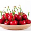 汶川樱桃新鲜水果车厘子5斤 产地直发