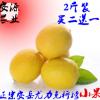 新鲜采摘黄柠檬2斤12-18个 独立包装 皮薄汁多 1件起包邮
