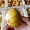 2017年安岳新鲜黄柠檬 水果 优质纯天然水果 皮薄多汁5斤一件