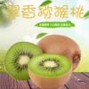 预定翠香新鲜水果绿心猕猴桃 产地现摘绿心猕猴桃新鲜奇异果