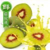 一件代发水果产销一体都江堰红心猕猴桃厂家批发