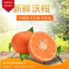沃柑新鲜水果包装5斤8斤 四川桔子柑橘现摘先发绿色食品一件代发