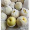 蒲城酥梨 批发陕西原产地新鲜水果黄皮酥梨 果园甜梨现货出售