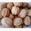 现货供应薄皮核桃新疆特产坚果散装核桃 大核桃原味5斤装 坚果零