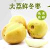 【大荔冬枣5斤】大荔脆甜冬枣 肉满皮薄鲜枣售卖 当季水果 量大从