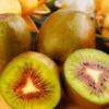 批发四川特色水果红阳红心猕猴桃果园现发新鲜奇异果孕妇水果味美