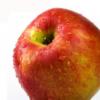 正宗苹果甘肃礼县特产 新鲜水果 冰糖心丑苹果 10斤 一件代发包邮