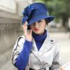 秋冬新品女帽子镶钻羽毛小毡帽纯羊毛韩版百搭女礼帽热卖爆款盆帽