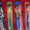 供应商品纸卡牙刷,外贸一次性牙刷
