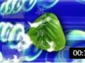 ZW05 医药保健堂 (7播放)