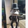 玻璃钢猴年吉祥物卡通猴美陈装饰道具