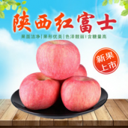 宁陵县翰林酥梨种植专业合作社
