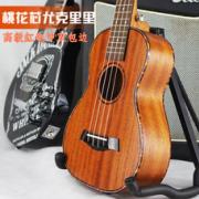 惠州市晨升乐器有限公司